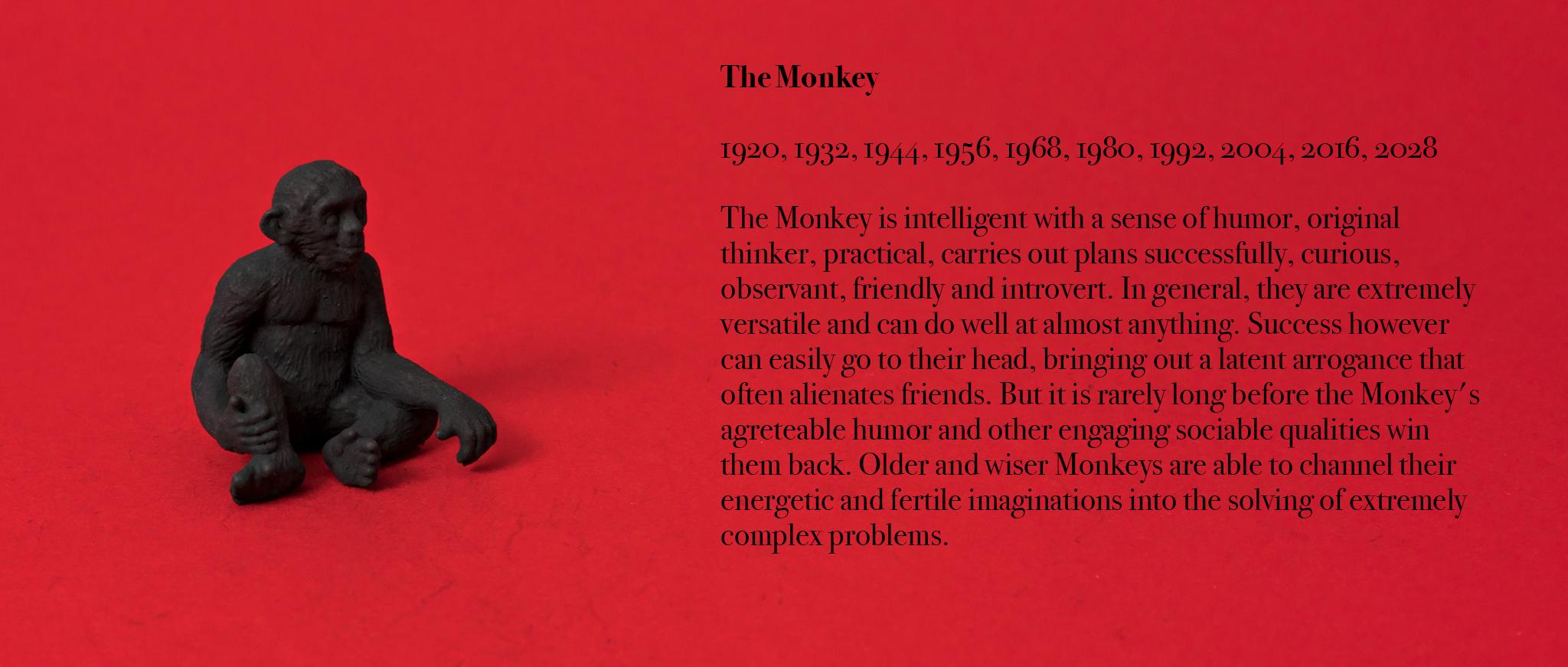 09. Monkey