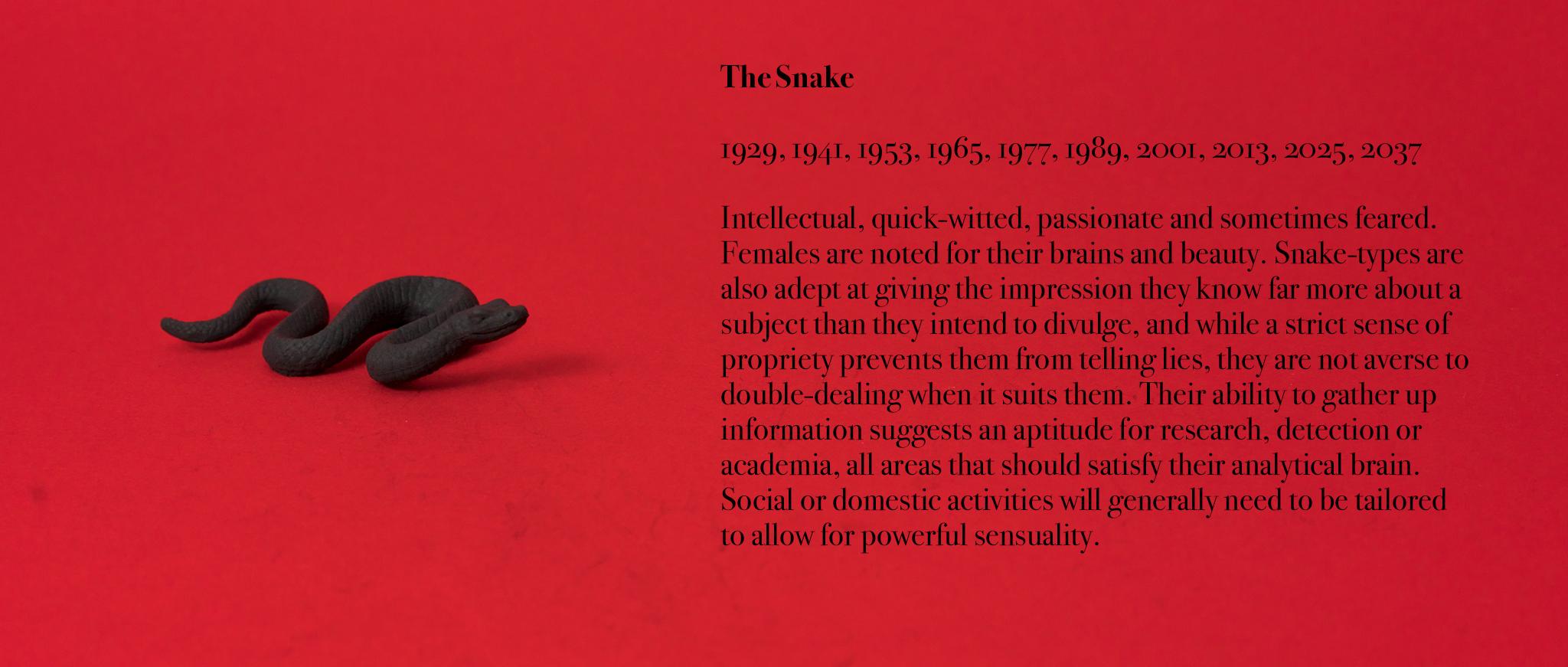 06. Snake