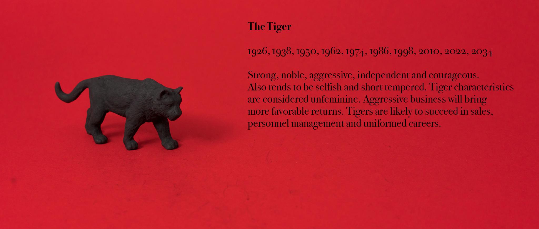 03. Tiger